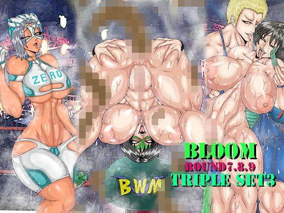 【新着同人誌】BLOOM TRIPLE SET3のアイキャッチ画像